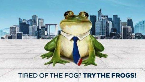 frog-pic685-685x390-19922