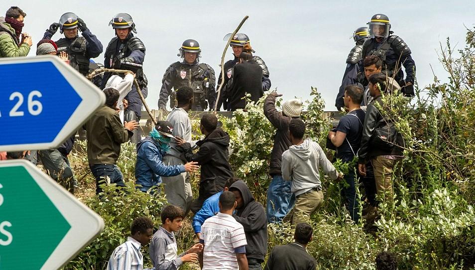 migranty-kale.jpg