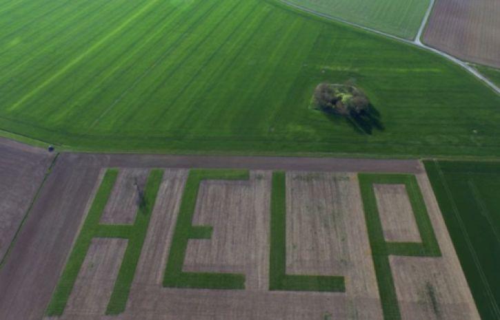 HELP! Во Франции фермер призывает на помощь