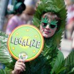 Во Франции хотят легализовать марихуану