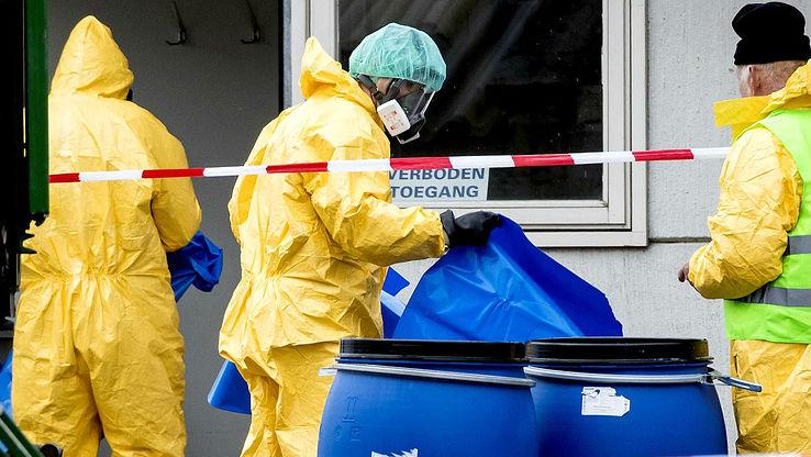 Во Франции обнаружили очаг вируса птичьего гриппа
