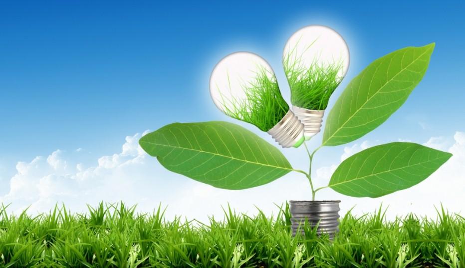 Франция хочет стать страной номером один с «зеленой экономикой»