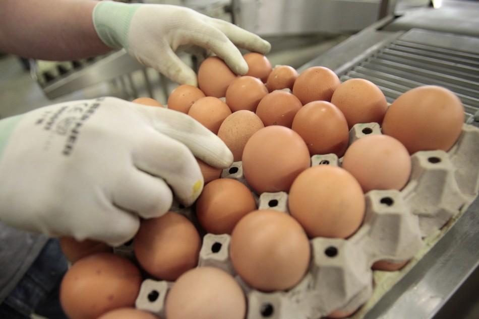 Зараженные фипронилом яйца появились во Франции