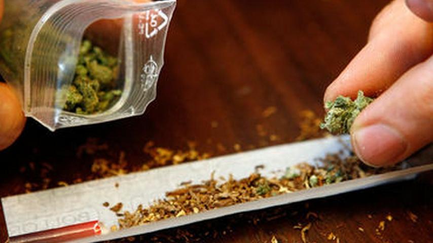 Во Франции маленькие дети начали чаще травиться марихуаной