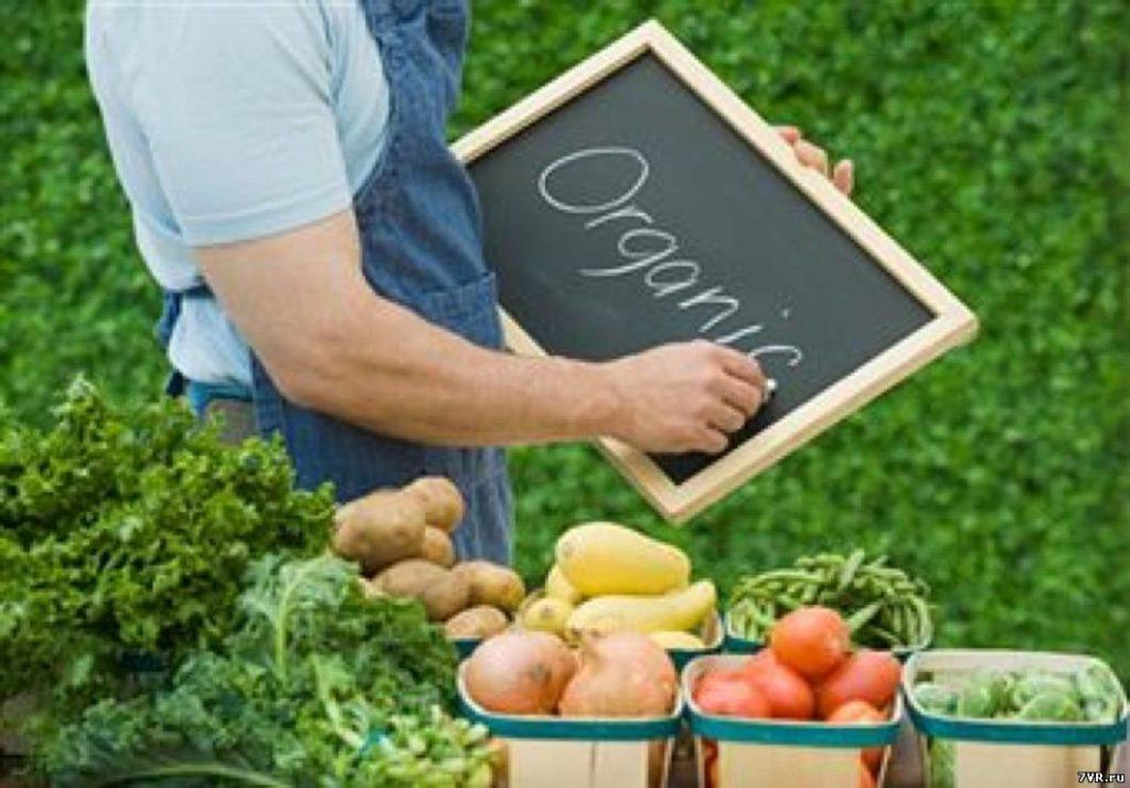 агробизнес Франция