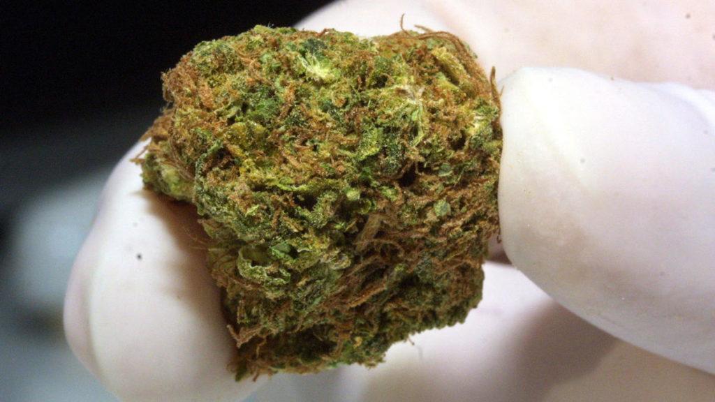 marijuana-GettyImages_698723-1024x576.jpg