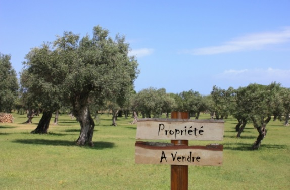 Покупка недвижимости во франции нужна ли виза для транзита через дубай