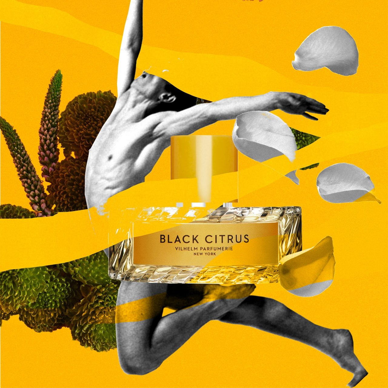1612357048_black-citrus-visual-1280x1280.jpg
